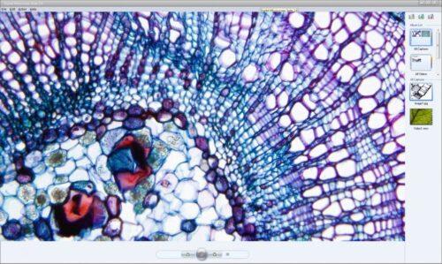 Celestron Digital Microscope Imager 44421