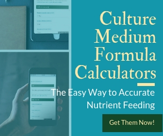 how to grow spirulina at home spirulina culture medium nutrient calculators