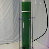 photobioreactor for spirulina cultivation