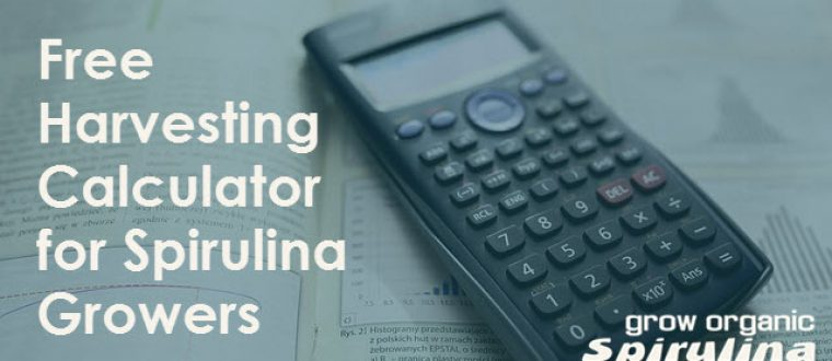 How much Spirulina can I harvest per day – Free Harvesting Calculator Included!